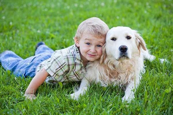 Photo d'un enfant enlassant son labrador